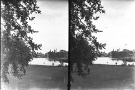 Speed River Stereoscope