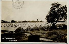 Dale Estate Ltd greenhouses, Brampton