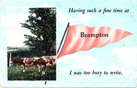 Having such a fine time at Brampton I was too busy to write.